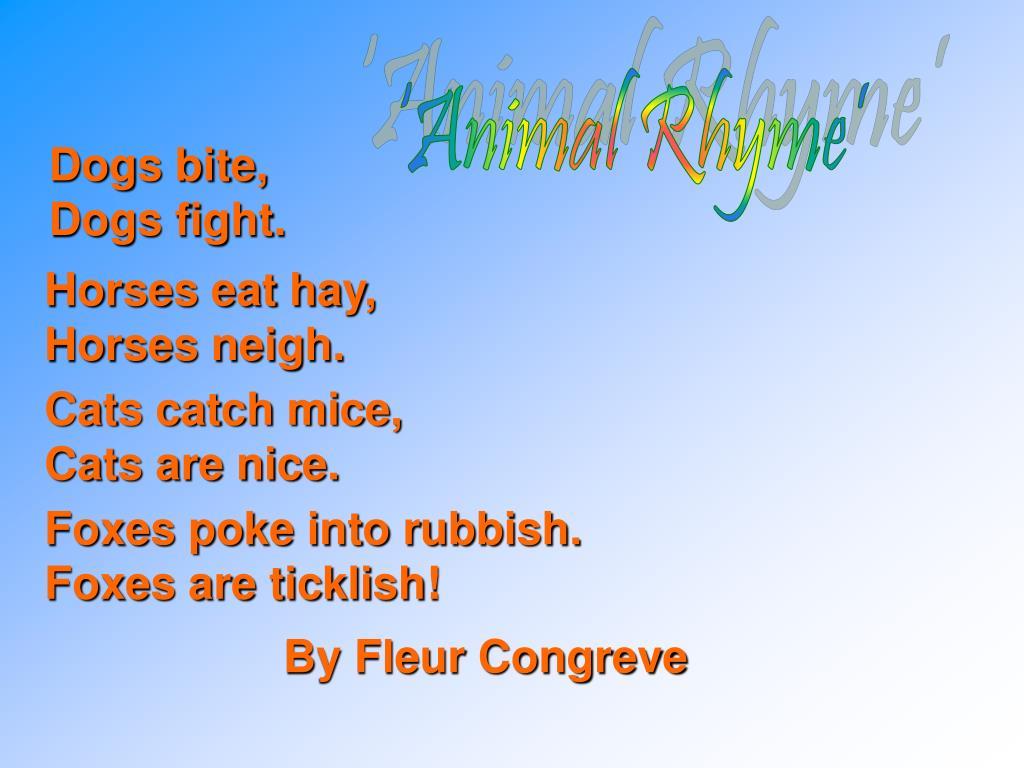 'Animal Rhyme'