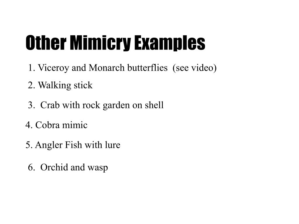 Other Mimicry Examples