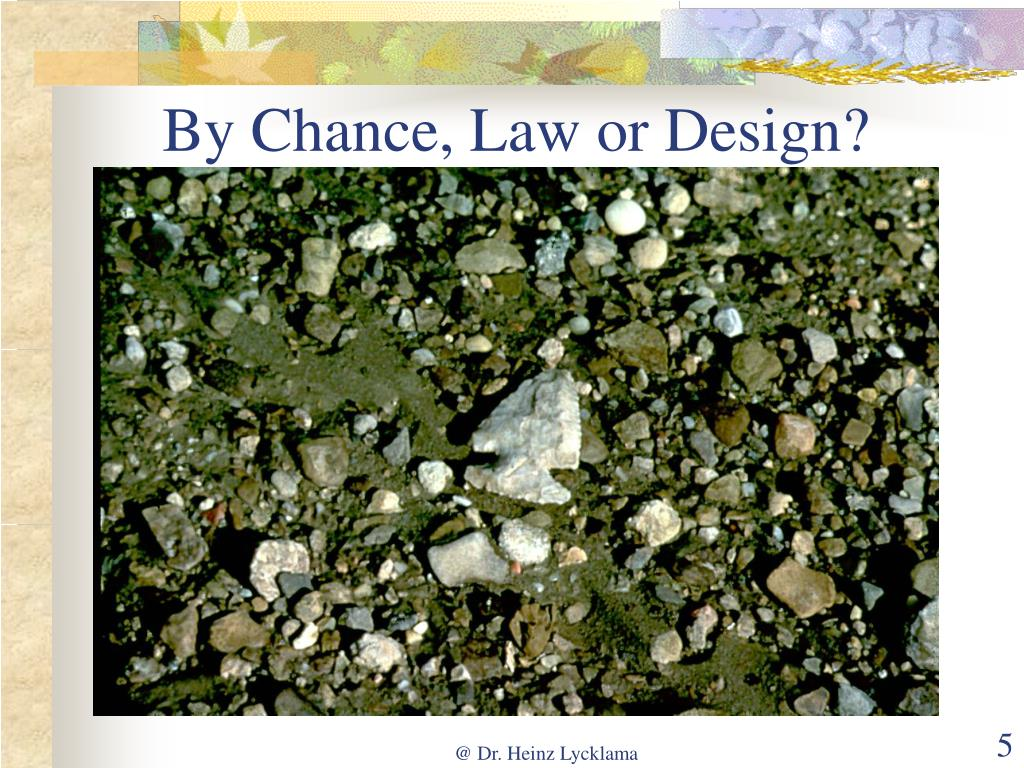 By Chance, Law or Design?