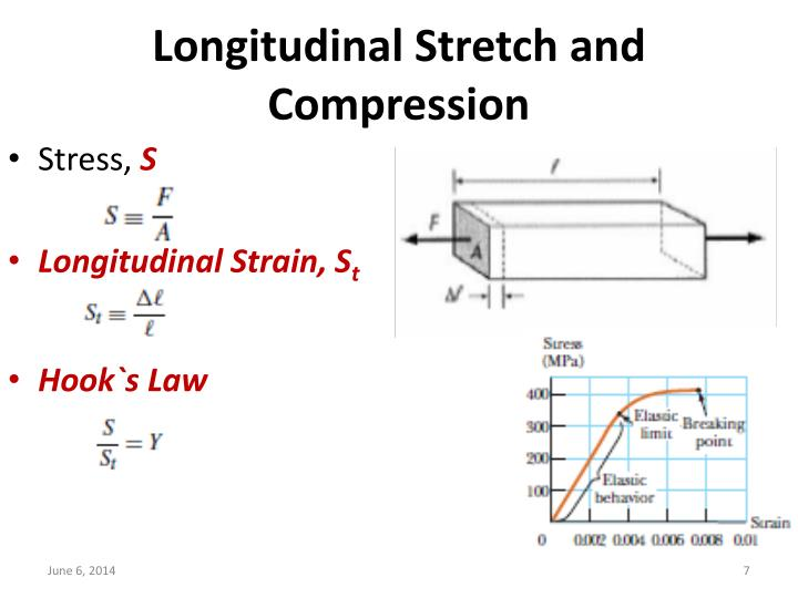 Longitudinal Stretch and Compression