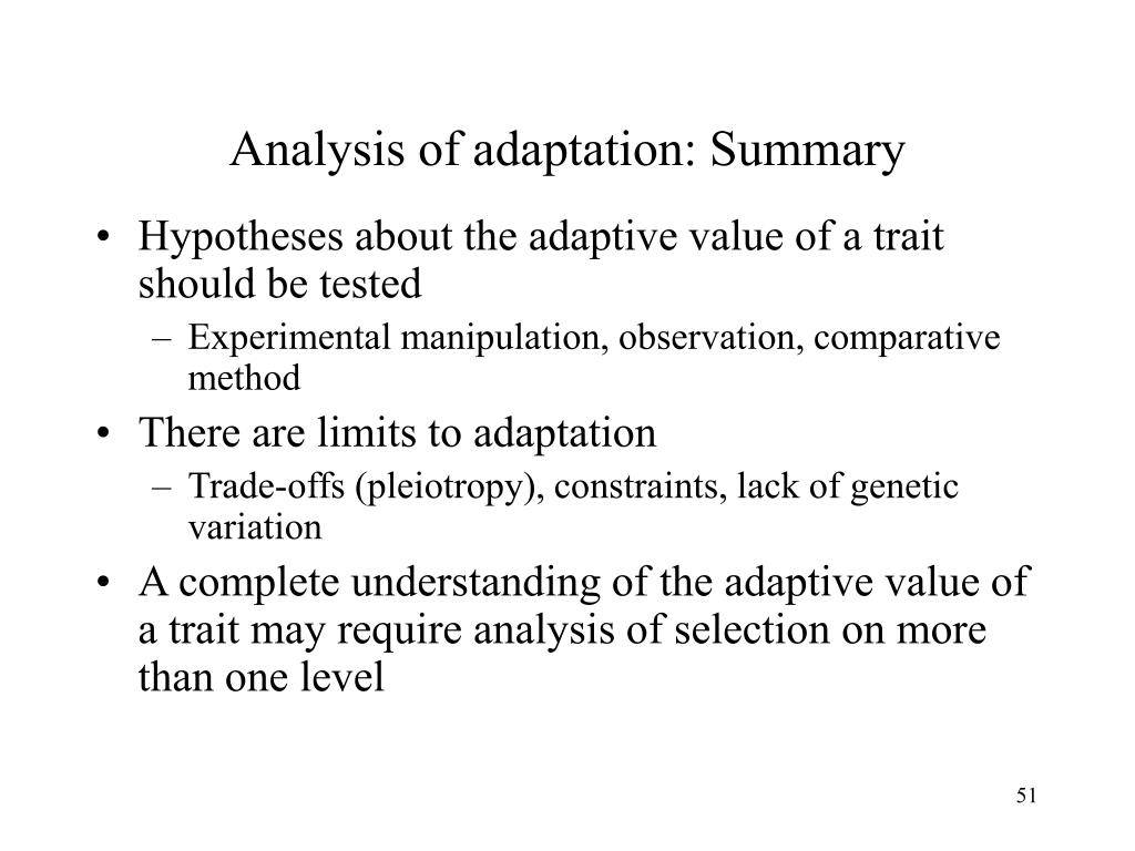 Analysis of adaptation: Summary