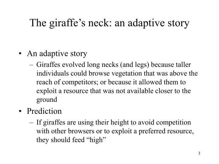 The giraffe s neck an adaptive story