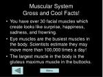 muscular system gross and cool facts