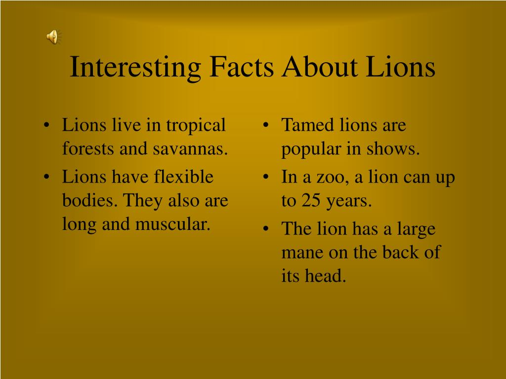 Lions live in tropical forests and savannas.