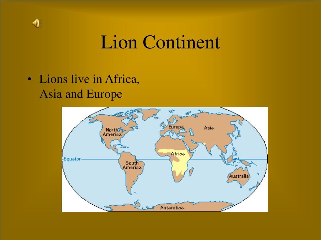 Lion Continent