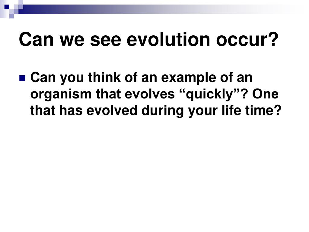 Can we see evolution occur?