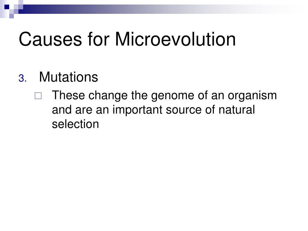 Causes for Microevolution