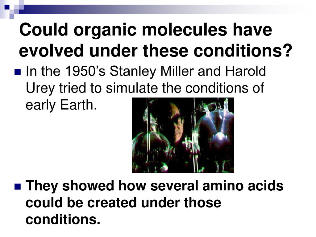 Could organic molecules have evolved under these conditions?
