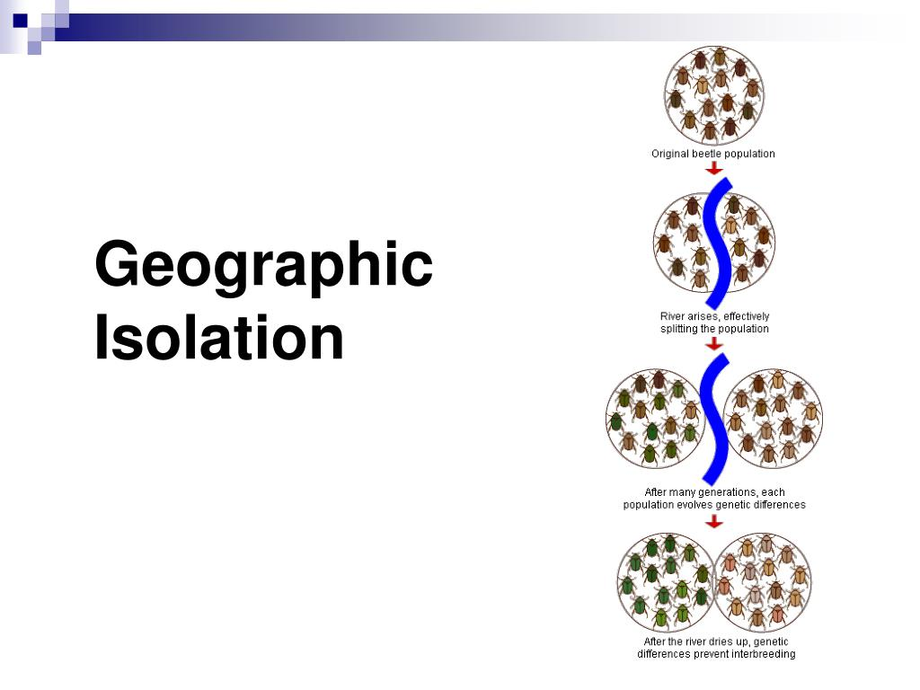 Geographic Isolation