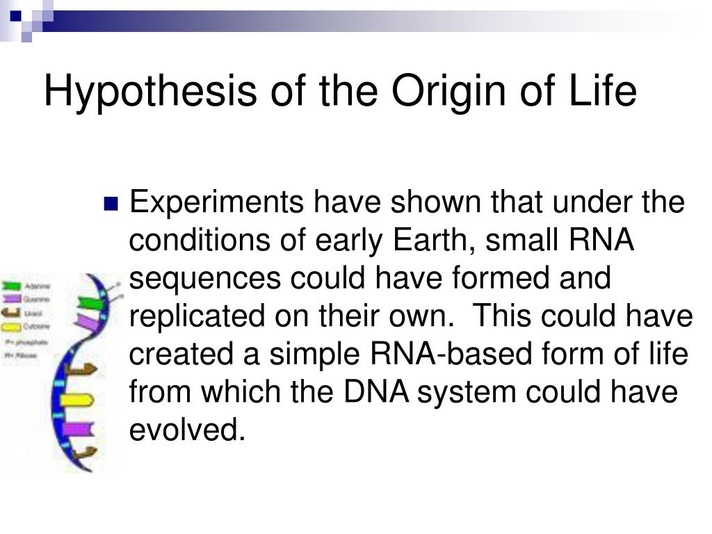Hypothesis of the Origin of Life