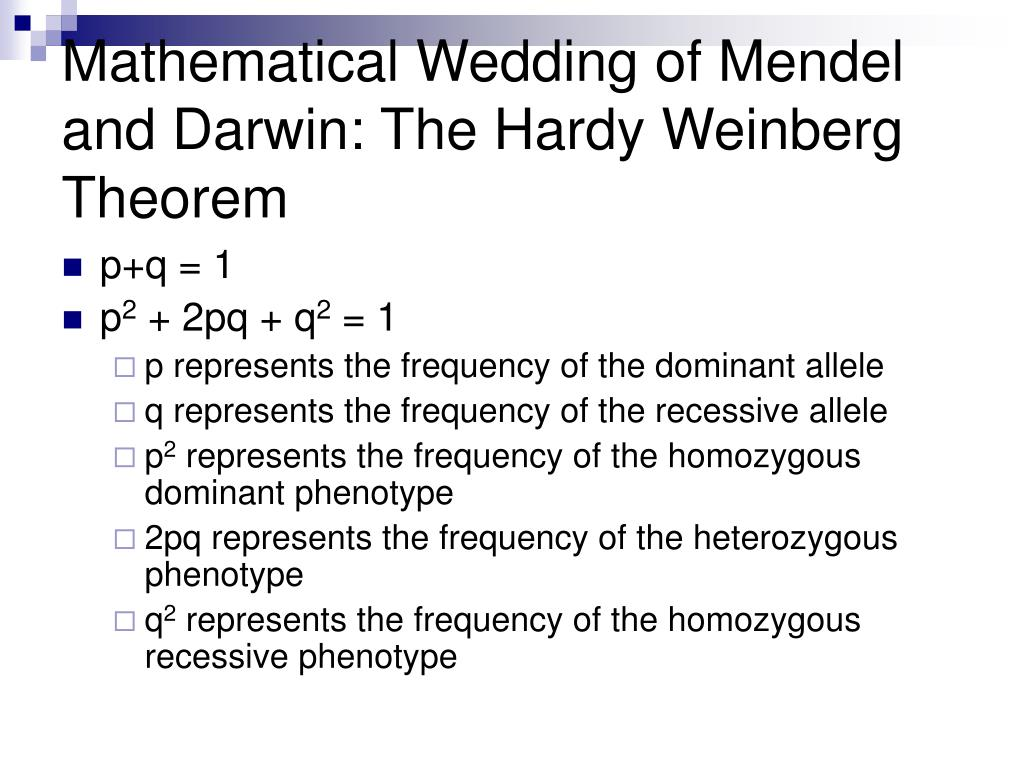 Mathematical Wedding of Mendel and Darwin: The Hardy Weinberg Theorem