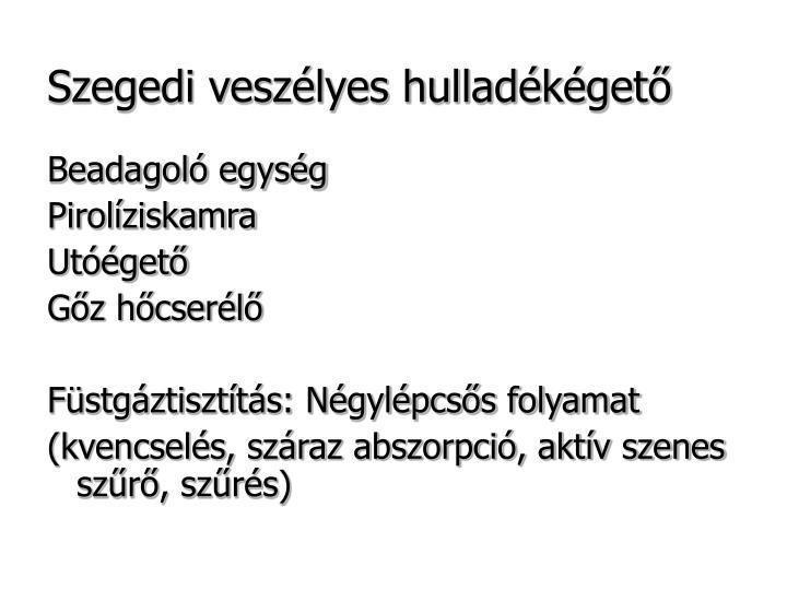 Szegedi veszélyes hulladékégető