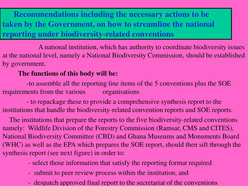 Recommendations including the necessary actions to be taken by the Government, on how to streamline the national reporting under biodiversity-related conventions