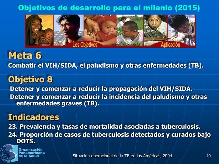 Objetivos de desarrollo para el milenio (2015)