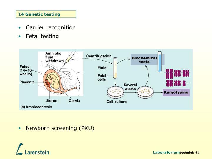 14 Genetic testing