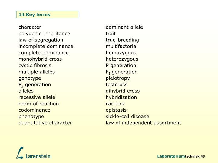 14 Key terms