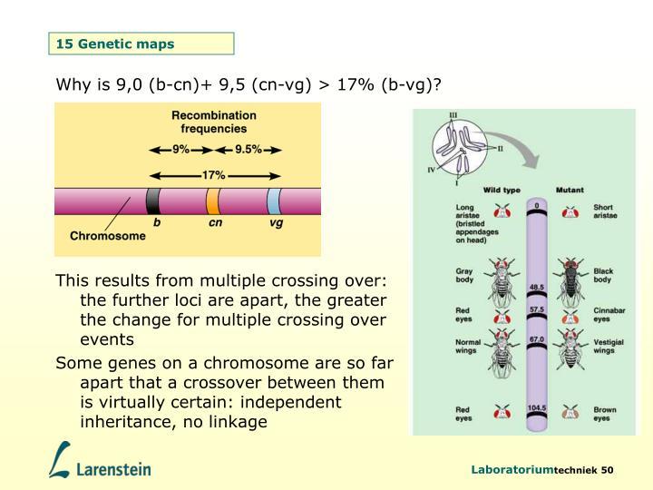 15 Genetic maps