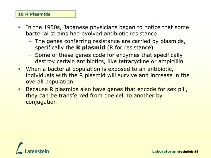 18 R Plasmids