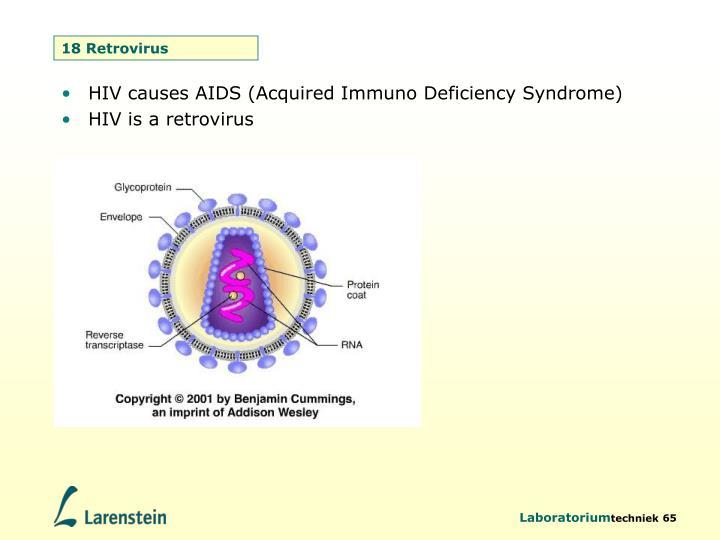 18 Retrovirus
