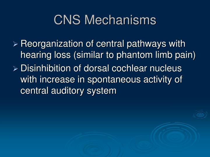 CNS Mechanisms