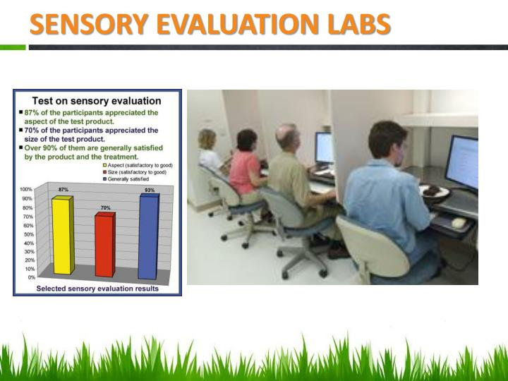SENSORY EVALUATION LABS