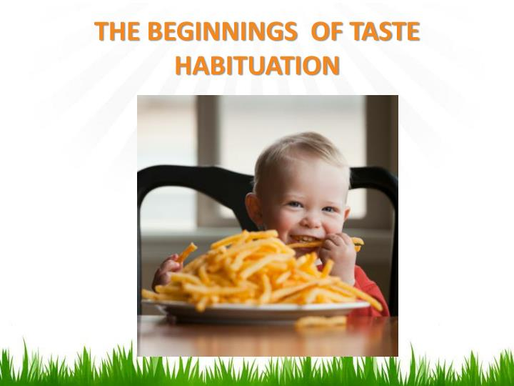 THE BEGINNINGS  OF TASTE HABITUATION