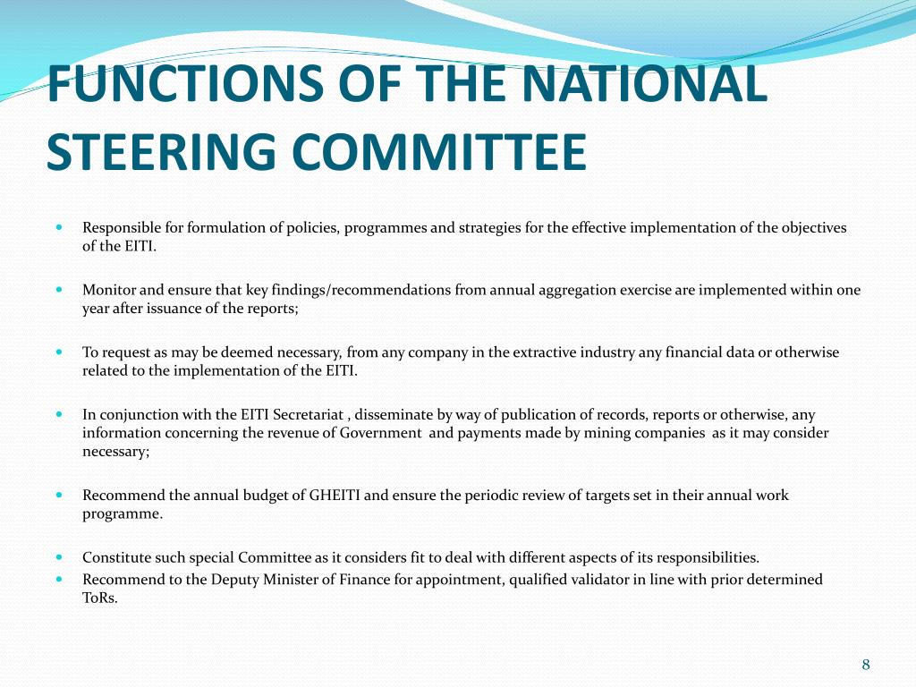 FUNCTIONS OF THE NATIONAL STEERING COMMITTEE