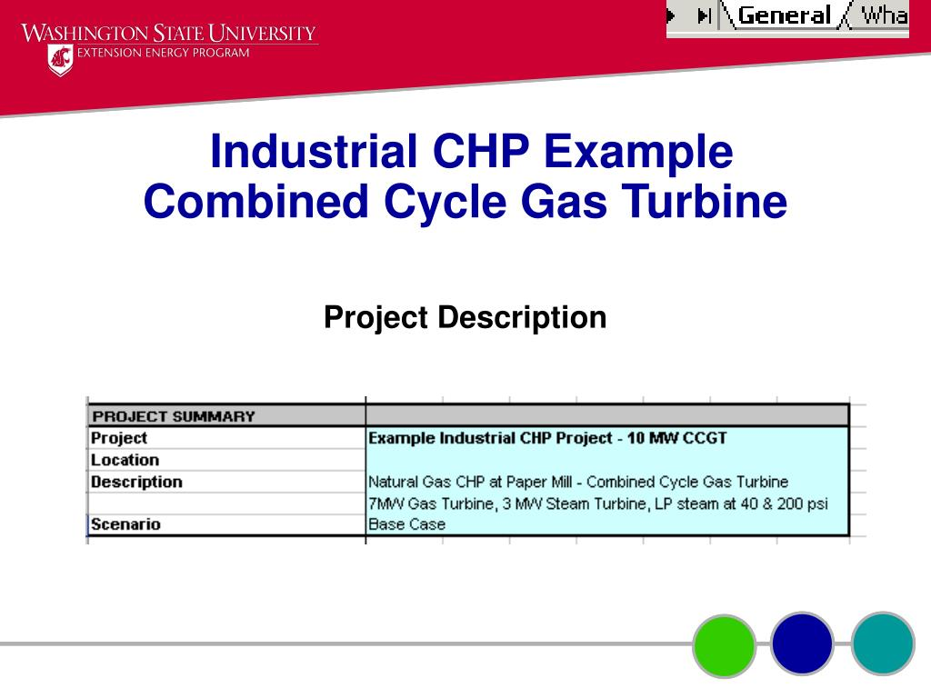 Industrial CHP Example