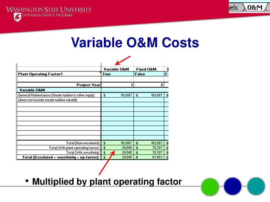 Variable O&M Costs