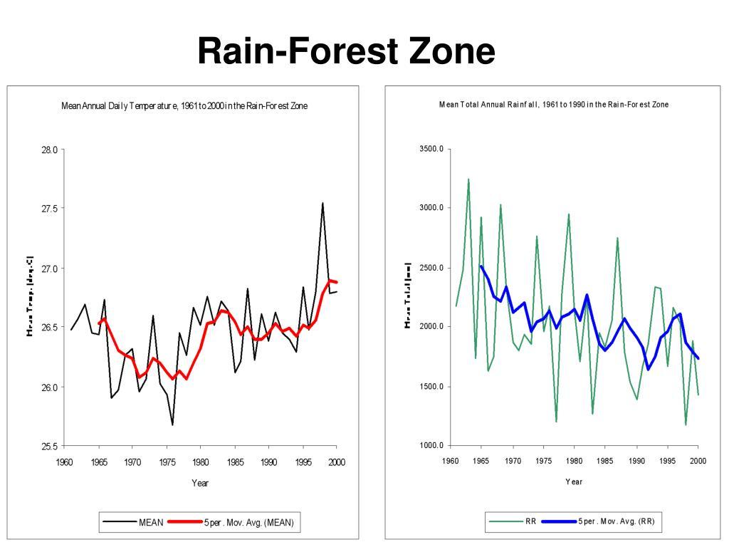 Rain-Forest Zone