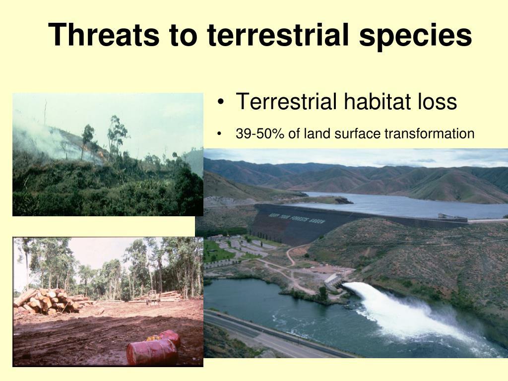 Threats to terrestrial species
