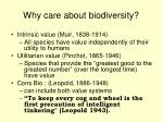 why care about biodiversity
