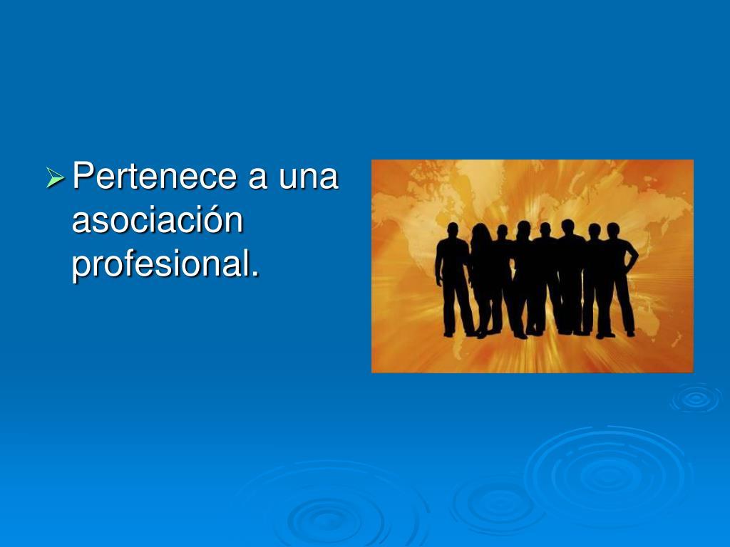 Pertenece a una asociación profesional.