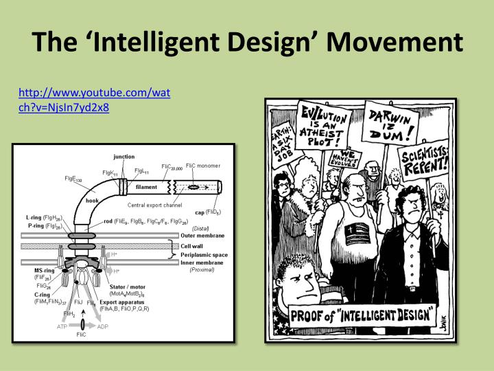 The 'Intelligent Design' Movement