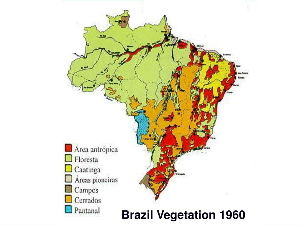 Brazil Vegetation 1960