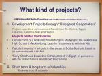 what kind of projects