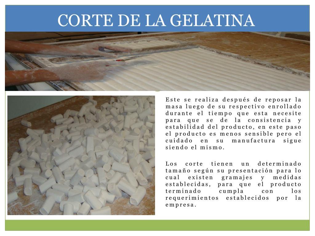 CORTE DE LA GELATINA