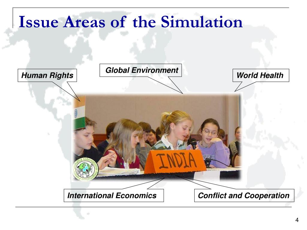 Issue Areas of the Simulation