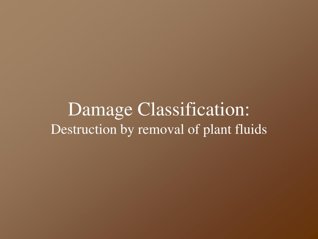 Damage Classification:
