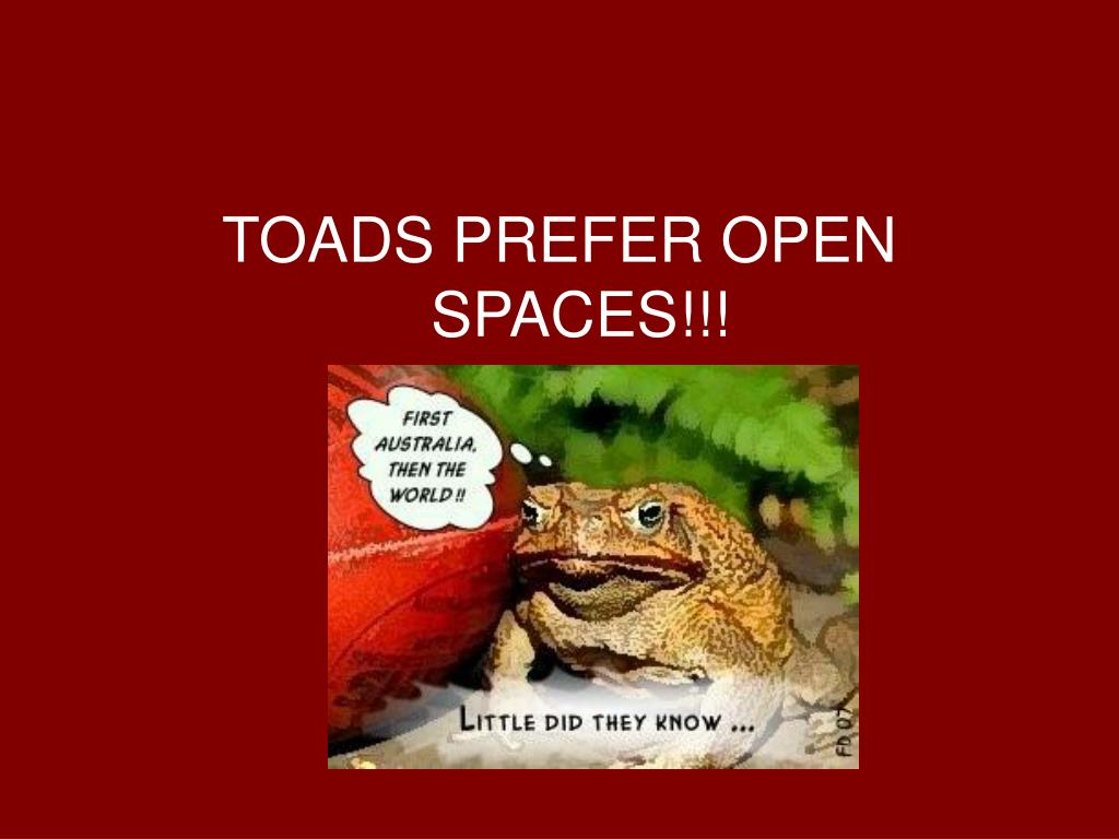 TOADS PREFER OPEN SPACES!!!