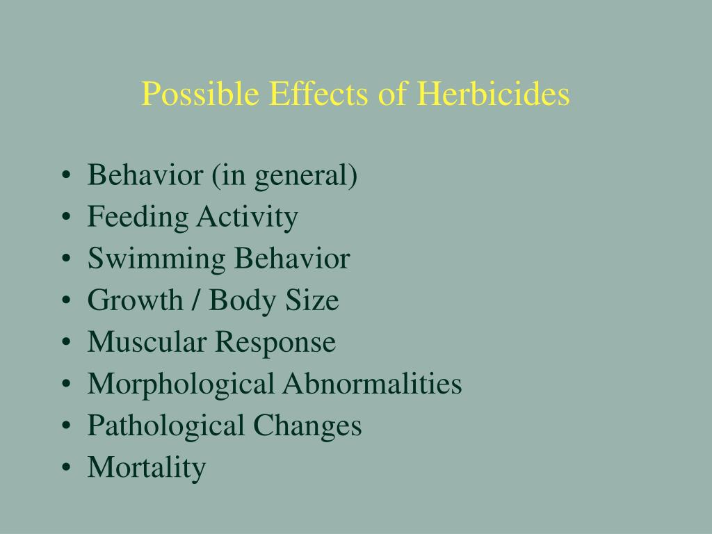 Possible Effects of Herbicides
