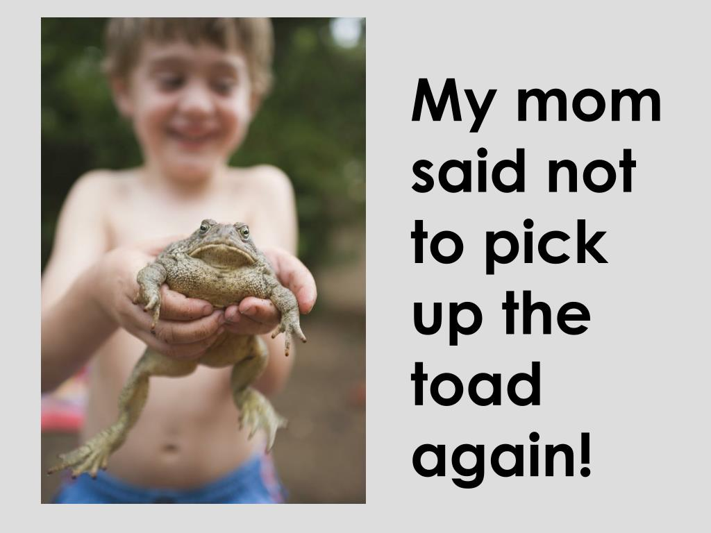 My mom said not to pick up the toad again!