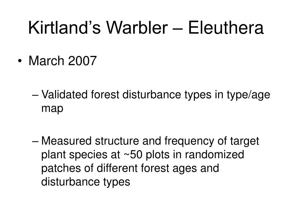 Kirtland's Warbler – Eleuthera