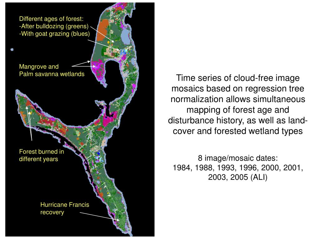 Time series of cloud-free image mosaics based on regression tree normalization allows simultaneous mapping of forest age and disturbance history, as well as land-cover and forested wetland types