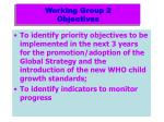 working group 2 objectives