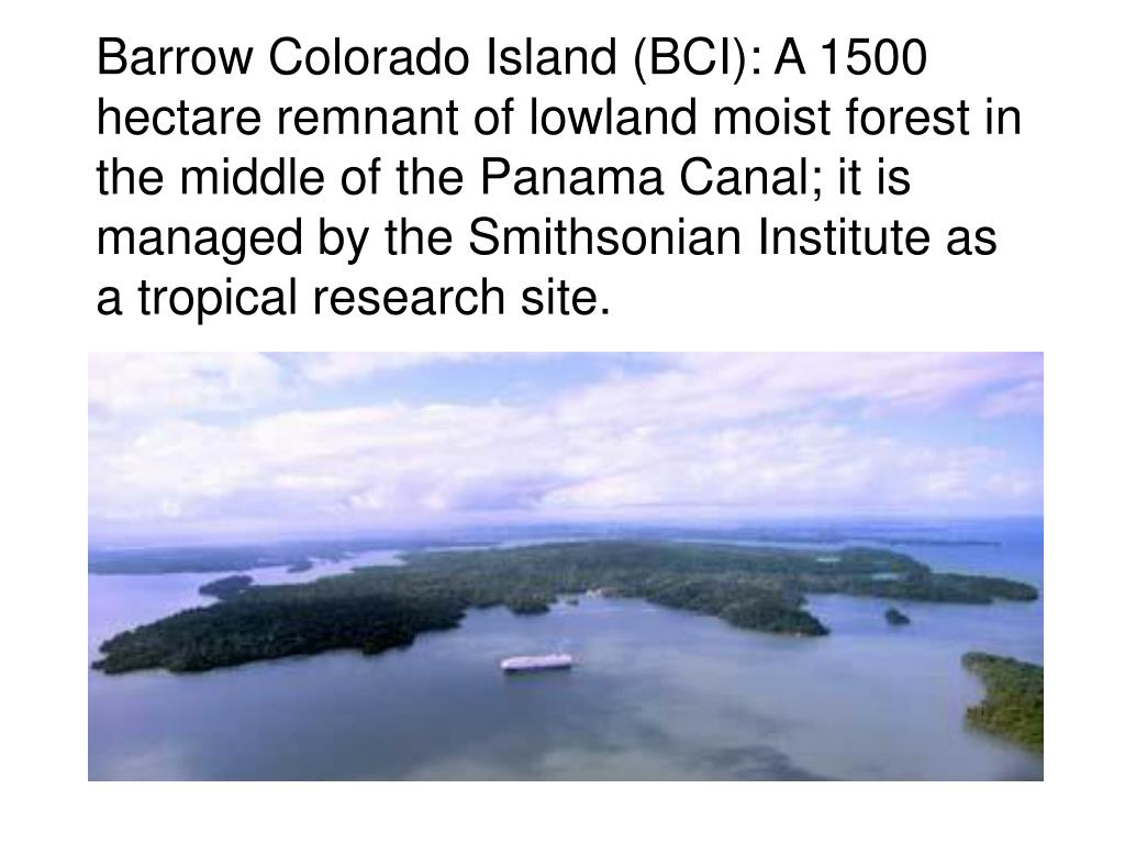 Barrow Colorado Island (BCI): A 1500 hectare remnant of lowland moist forest in the middle of the Panama Canal; it is