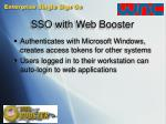 sso with web booster