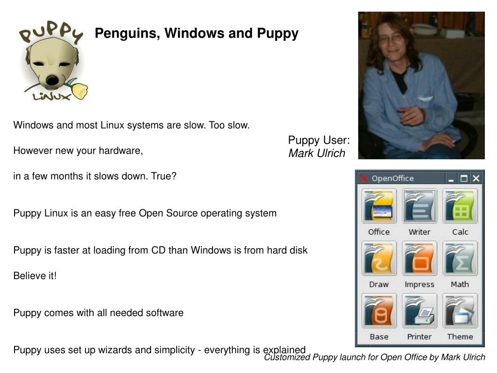 Penguins, Windows and Puppy