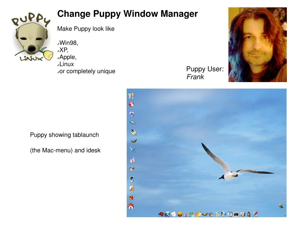 Change Puppy Window Manager