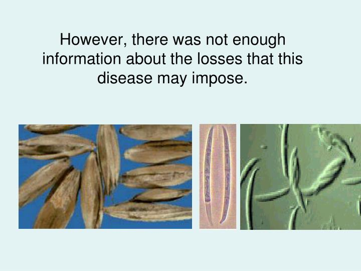 However, there was not enough information about the losses that this disease may impose.